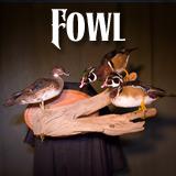 fowlbutton Home